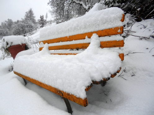 snow1 008